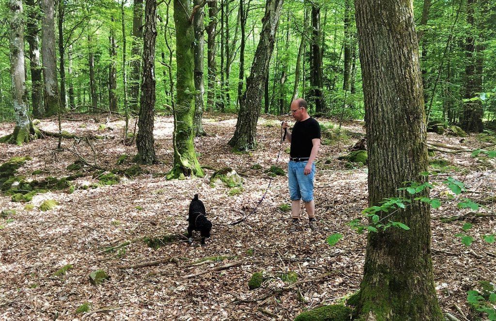 Man på promenad med kopplad hund i Plönningeskogen